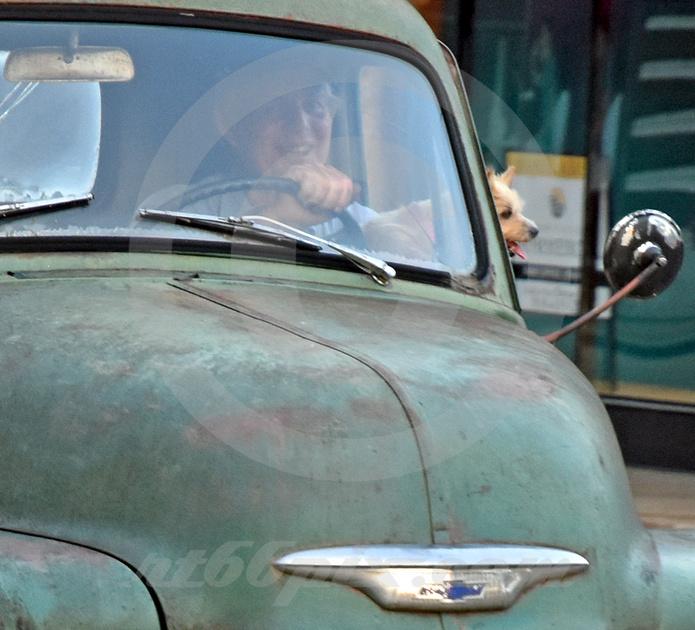 DRIVER & DOG (Rt 66 Sapulpa OK)
