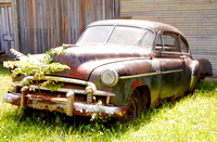 RUSTING CHEVY & SAPLING (National Road Norwich OH)