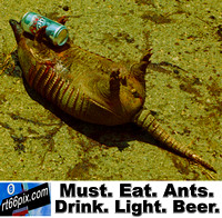 Must. Eat. Ants. Drink. Light. Beer.