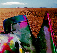 FIN & FURROWS (Rt 66 Cadillac Ranch TX)