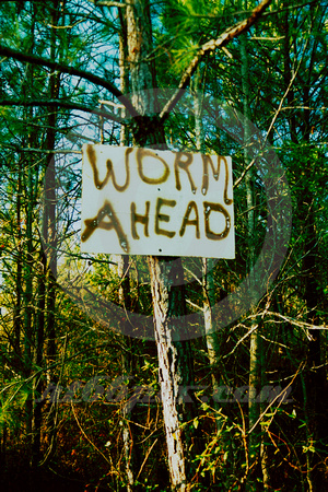 WORM AHEAD (East TX)