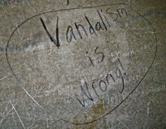 causes of vandalism